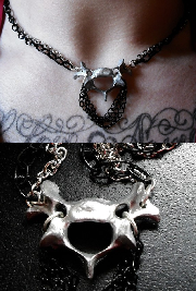 vertebrae of a raccoon necklace